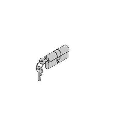 Изображение Профильный цилиндр вставка 31,5x40,5 мм для TPS, Арт. 690999